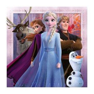 Ravensburger 3in1 Puzzel Disney Frozen 2 3x49 Stukjes