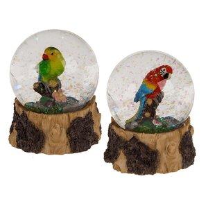 Snowglobe Papegaai Glitter Assorti