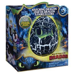Dragons Hatching Dragon Toothless + Licht en Geluid