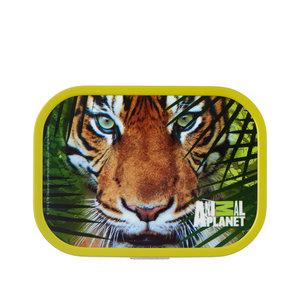 Rosti Mepal Lunchbox Animal Planet Tijger