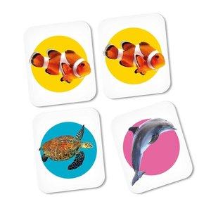 Clementoni Memo Zeedieren met 48 Kaarten