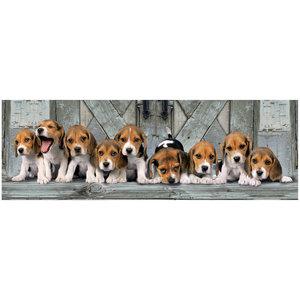 Clementoni High Quality Collection Panorama Puzzel Beagles 1000 Stukjes