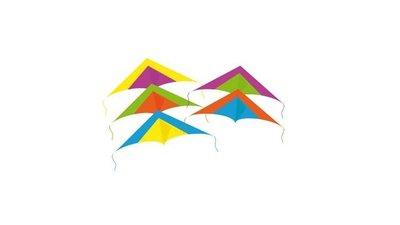 Rhombus Minidelta Vlieger Assorti